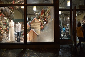 Windows in Anthropologie